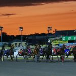 Albion park harness racing track fees